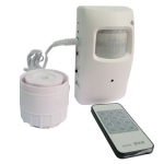Mini Alarm DVR Camera with Remote Controller , With sony chipset, Only can use original SD card