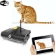 Wifi Controll Wireless Spy Tank With Photographs, Video, Camera Function, WI-FI Rover Tank (Black)