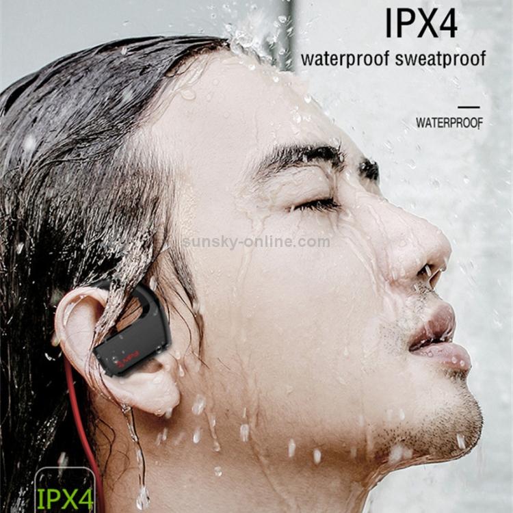 IP6D0599J