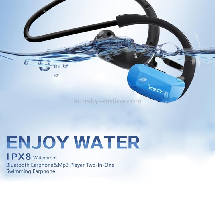 IP6P0889L