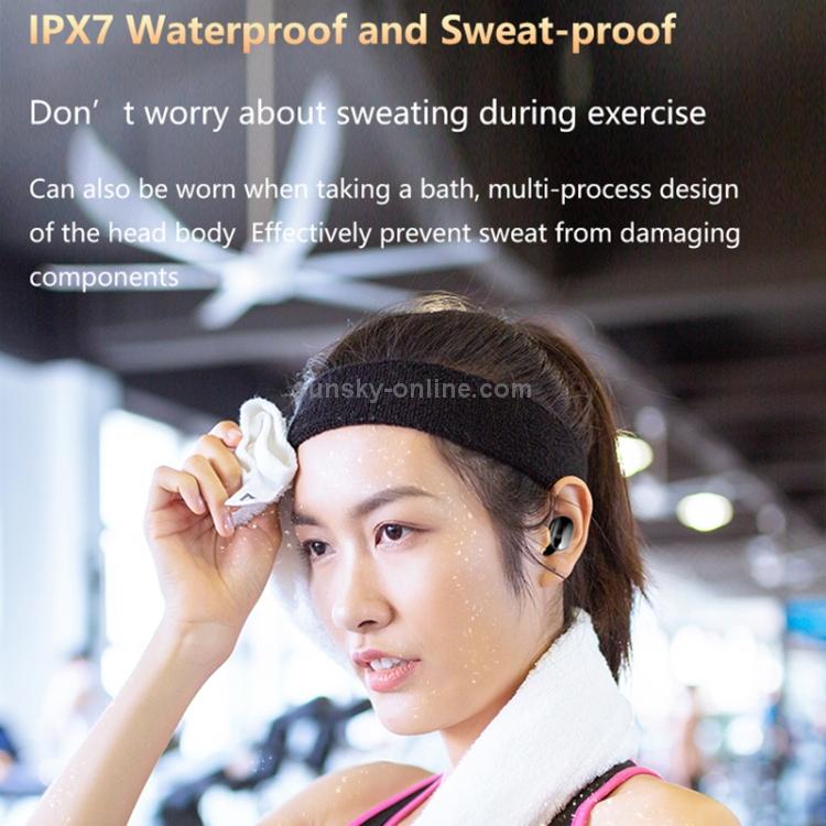 IPXS2319B