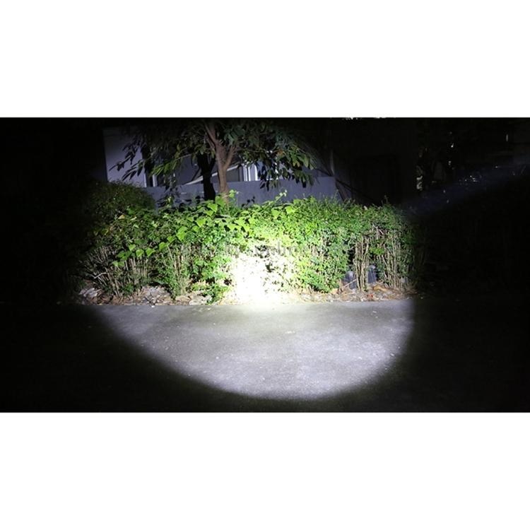 LED0368_13.jpg