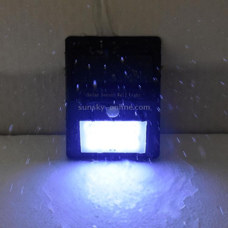 LED2048