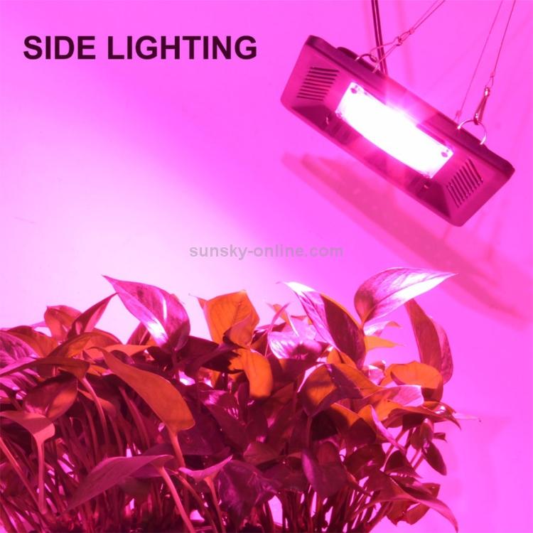 LED3099