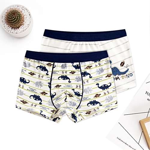 Buy 2 PCS / Set Dinosaur Pattern Cotton Breathable Children Underwear, Size: 160 (Blue + White) for $2.70 in SUNSKY store