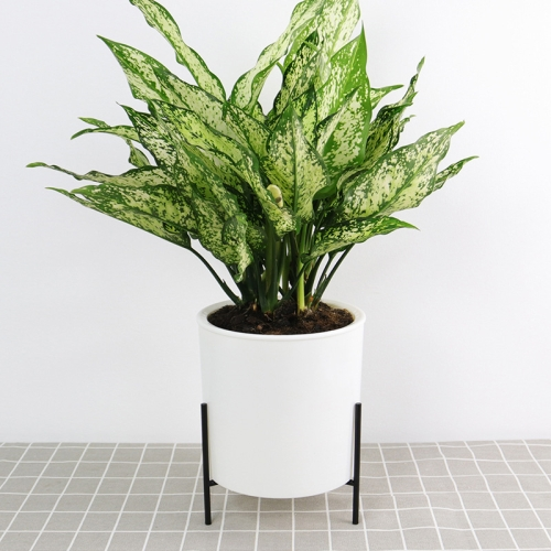 130mm PP Planter Flower Pot Automatic Water-absorbing Lazy Flower Pot, with Shelf фото