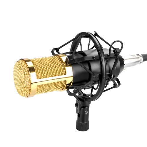 FIFINE F-800 Professional Condenser Sound Recording Microphone with Shock Mount for Studio Radio Broadcasting & Live Boardcast, 3.5mm Earphone Port, Cable Length: 2.5m(Black)