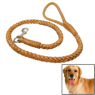 Buy 1.1m Synthetic Leather Braided Harness Lead Leash Traction Rope Dog Safety Rope Chain for Puppy Dog Pet for $6.68 in SUNSKY store