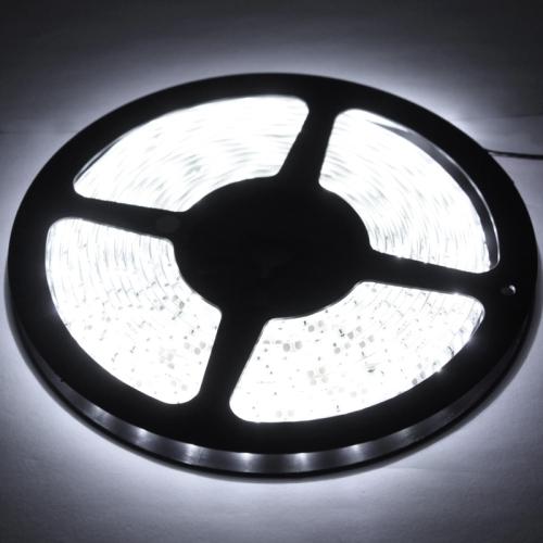 Epoxy Waterproof Rope Light, Length: 5m, 3528 SMD LED, 60 LED/m, DC 12V(White Light)