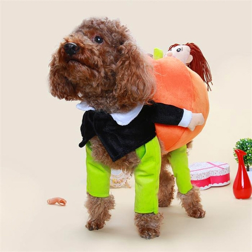 Summer Clothes Dog Funny Clothes Pet Clothes, Size: S