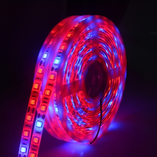 5m 300 LEDs SMD 5050 Full Spectrum LED Strip Light Fitolampy Grow Lights for Greenhouse Hydroponic Plant Non Waterproof(3 Red 1 Blue)