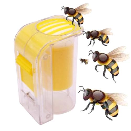Bee Queen Marking Marker Cage Bottle Plunger Push Beekeeping Beekeeper Tool New